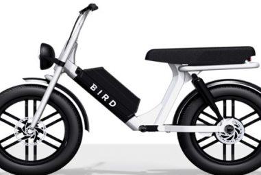 Bird Cruiser : on vous dit tout sur ce nouveau mini-vélo électrique !
